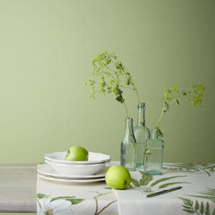 Sanderson Paint - English Pear