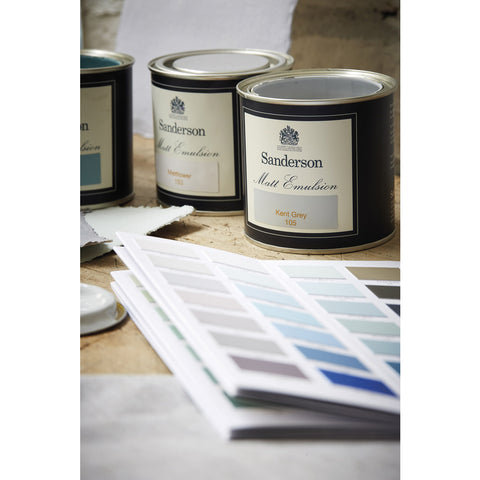 Sanderson Paint - Whitstable Blue