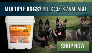 Multiple dogs? Bulk sizes available