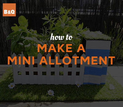 VIDEO: How To Make A Mini Allotment