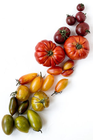 How to recognise the real San Marzano Tomatoes