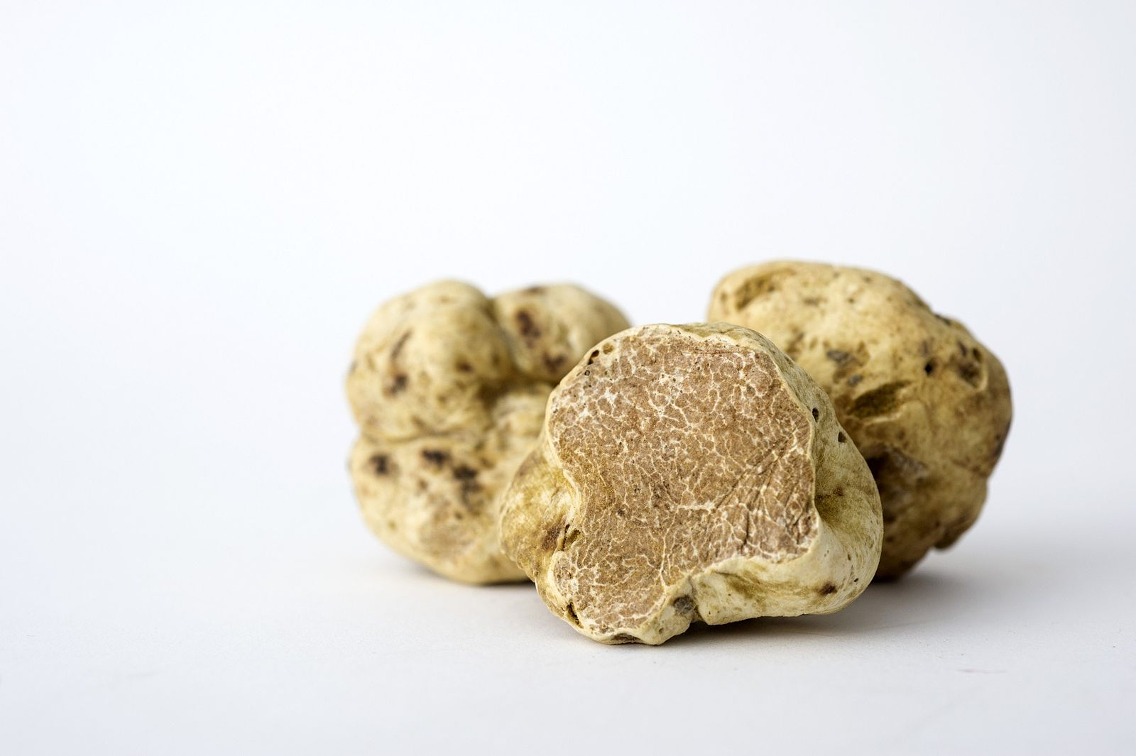 White Truffle. Image from Wikimedia Commons, author Evan Sung.