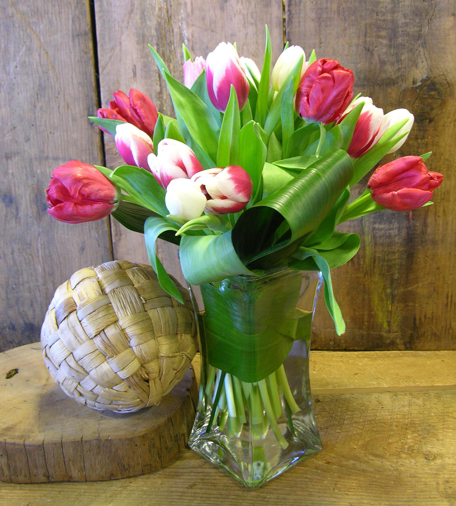 20 Dutch Tulips arranged