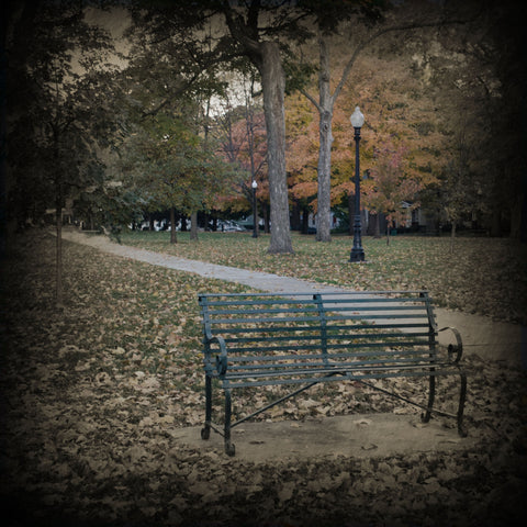 Franklin Park Bench