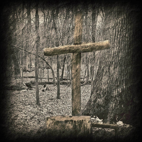 Winter Cross