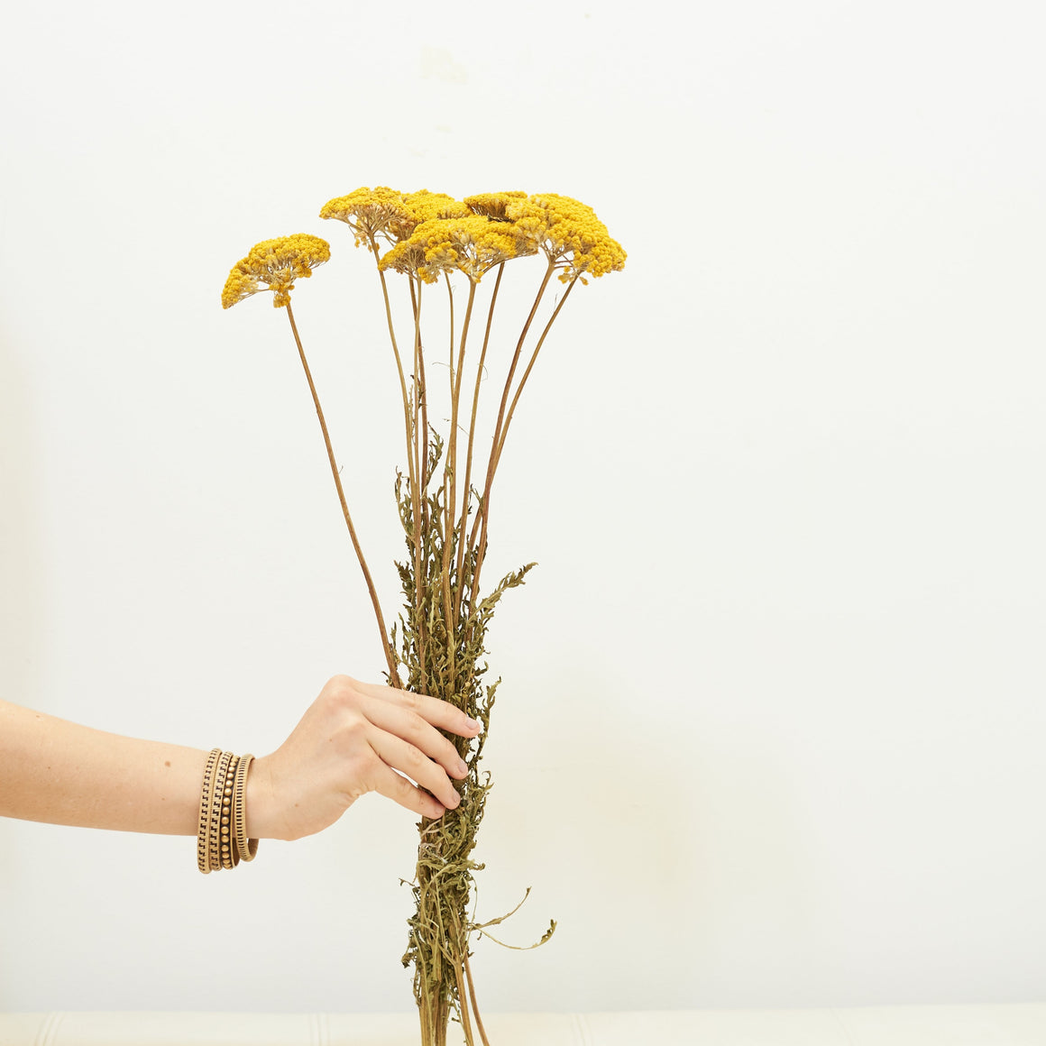 Dried Flowers - Achillea Parker, Yellow / زهور