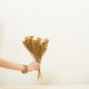 Dried Flowers - Bloom Broom Bunch, Natural / زهور