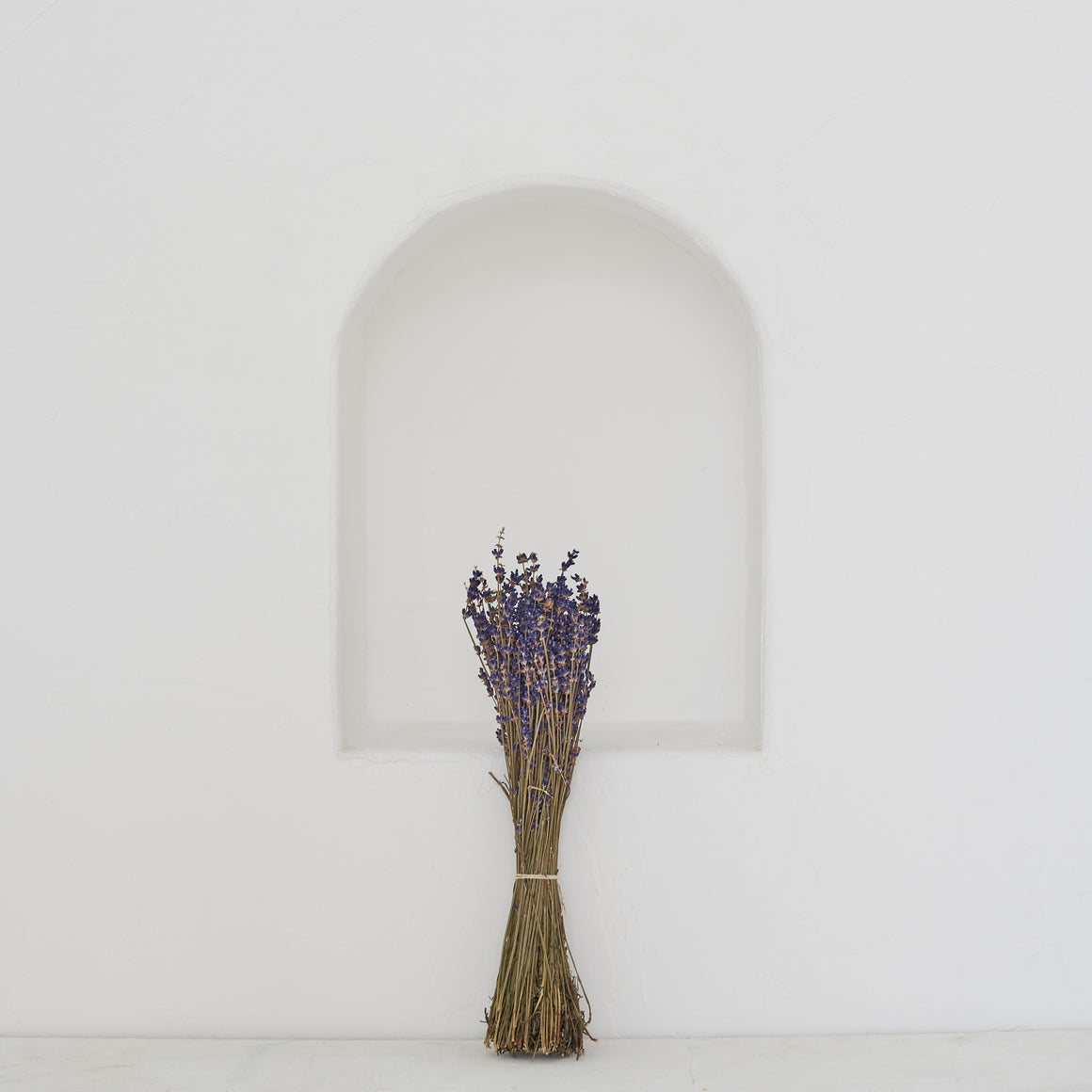 Dried Flowers -  Lavender / زهور