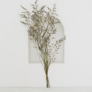 Dried Flowers -  Limonium / زهور