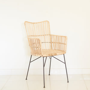 Porto Arm Chair - New Design
