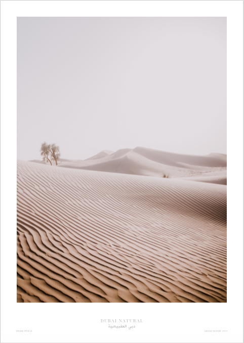 Dubai Natural Print Only - Desert / طباعة