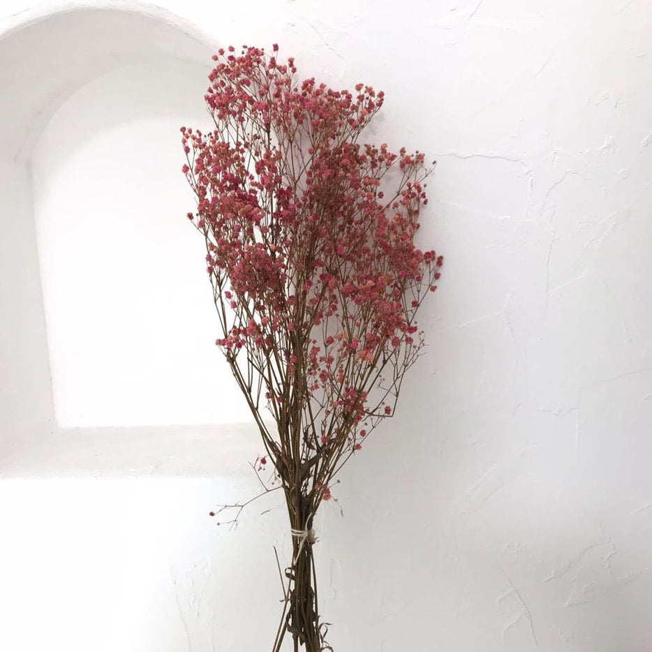 Dried Flowers - Paniculata (Pink) /زهور