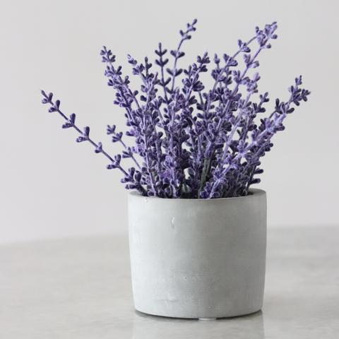 lovely classic lavender scent