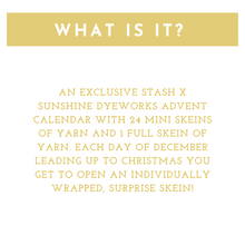 Load image into Gallery viewer, Stash Yarn Advent Calendar 2020 - Stash-A Place For Yarn