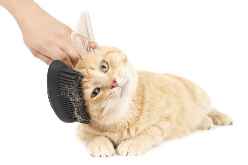 The Pet Brush, Gleener Ultimate Fuzz Remover Pet Grooming Accessory