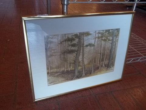Coastal Cypress painting by Hazel Gibson10390