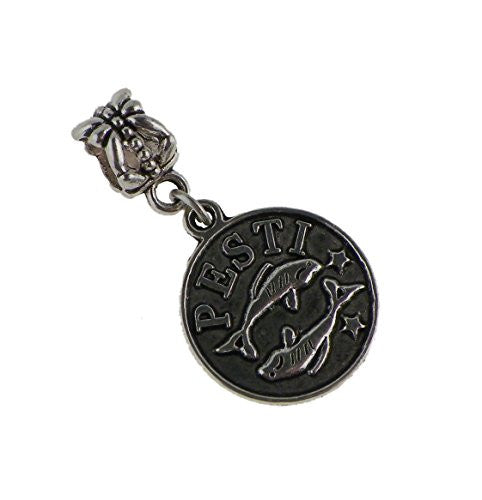 Pisces Zodiac Style Dangle Bead Fits All Brand Charm Bracelets