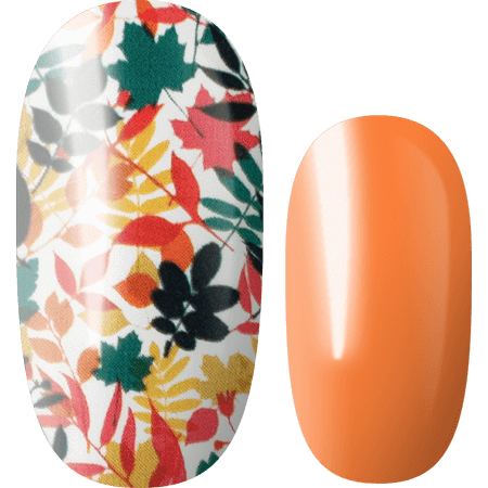 Lily and Fox - Nail Wrap - Orange Blossom #T0452
