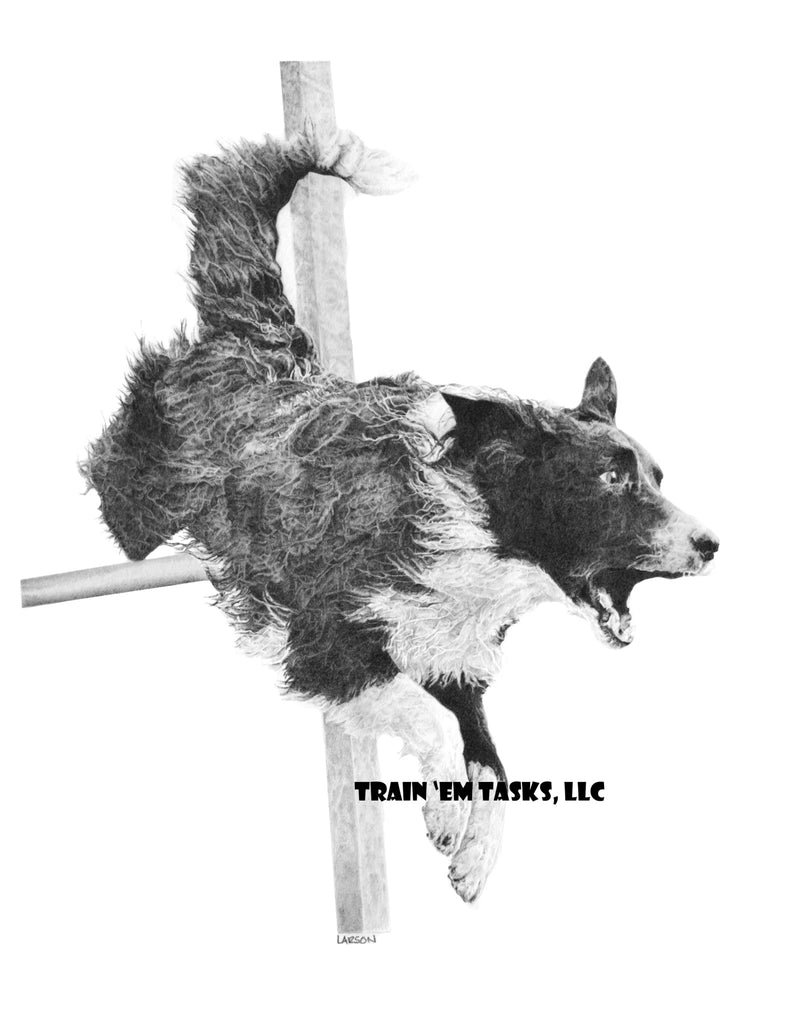 Agility Border Collie Art Print - 8 x 10""