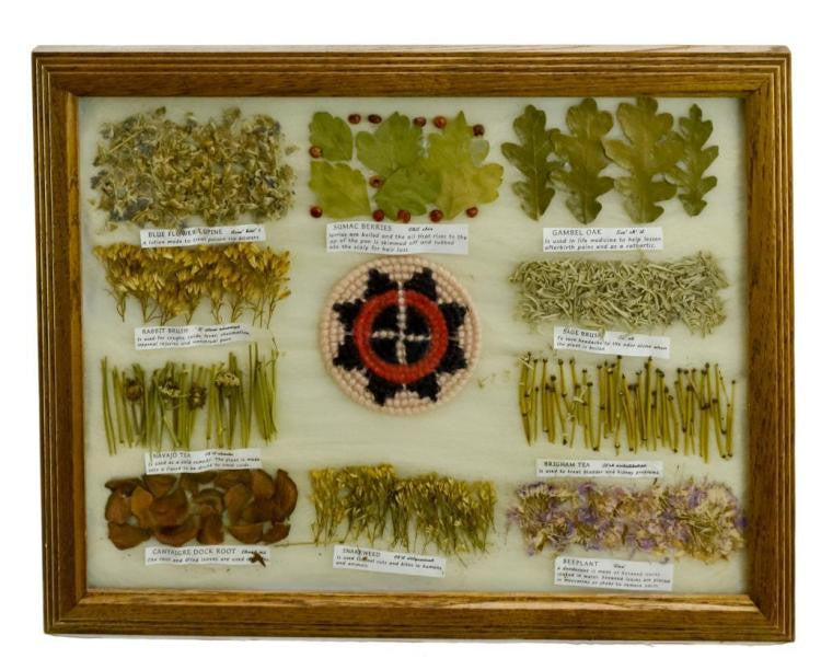 Native American, Pressed Navajo Medicinal Botanical Specimen Board, #856 Sold Out