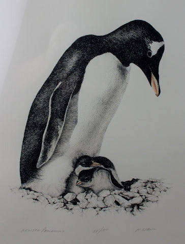 Fine Vintage Lithographic of Gentoo Penguin and Her Chicks, 115/150, by M. Stanu, Ca 1970's. #1397