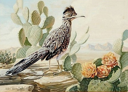"Watercolor : William Warren Dailey Watercolor, ""Arizona Roadrunner"" Flowering Cacti & Desert Vistas"
