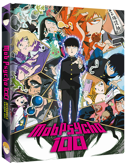 Mob Psycho 100 - Edition Collector Intégrale Saison 1 DVD
