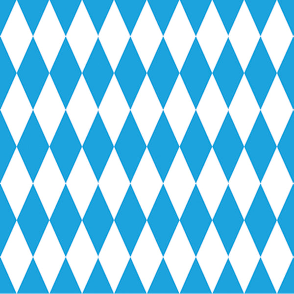 Large Blue and White Oktoberfest Backdrop 4' x 30'