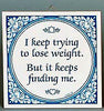 Inspirational Plaque: Trying Lose Weight…