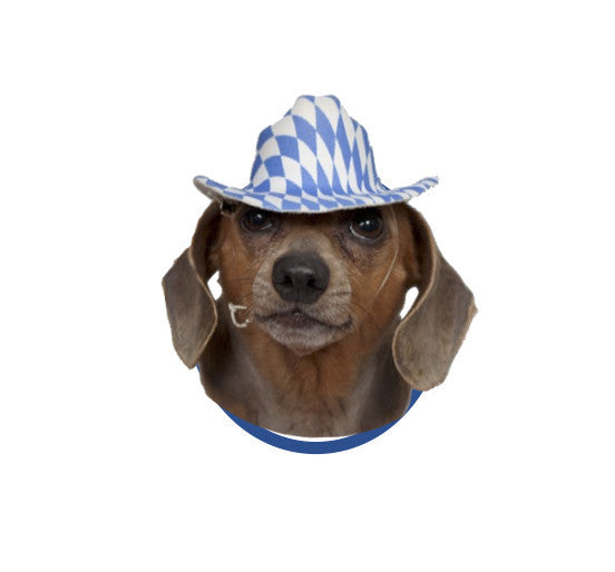 Bavarian Oktoberfest Mini Hat - Apparel-Costumes, Apparel-Dogs, Bavarian Blue White Checkers, Bayern, Felt, German, Germany, Hats, Hats-Hair Accessories, Hats-Hair Clip, Hats-Kids, Hats-Mini, Hats-Party, Miniatures, Oktoberfest, Top-GRMN-B - 2 - 3 - 4