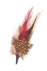 Single German Hat Feather Decor White/Brown