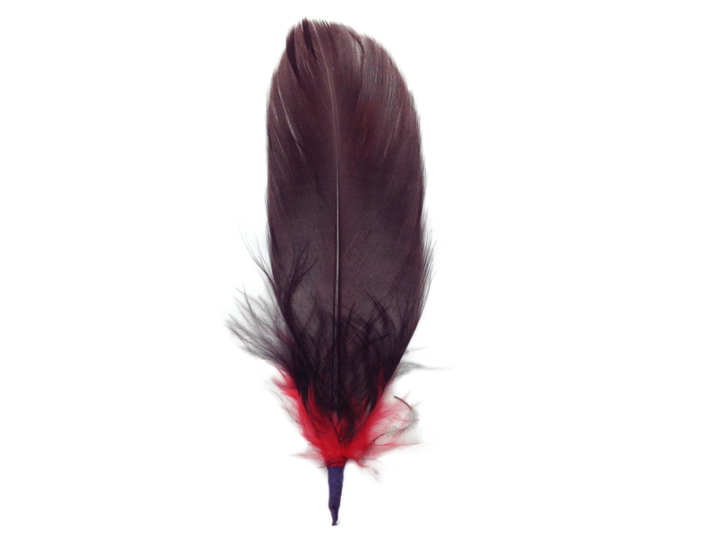 Single Brown & Red Hat Feather - 2