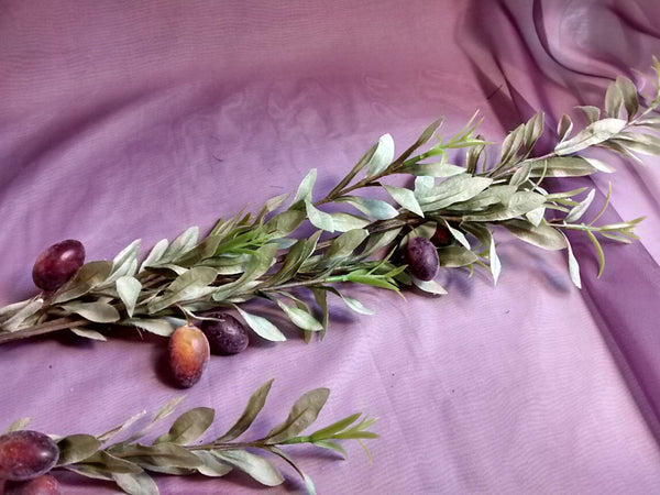 Ornamental Olive Branch - cibola