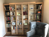 Bookcase Bed (Gallery)