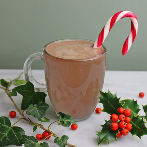 Peppermint Protein Hot Chocolate