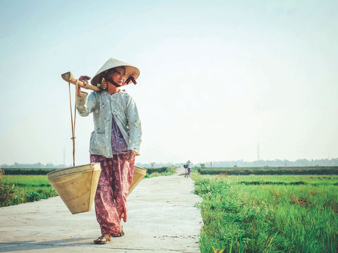 Vietnam. Travel Destinations For The Ultimate Adventurer | Neat Nutrition. Active Nutrition, Reimagined For You.