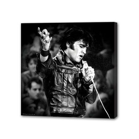 Elvis Presley Small Stretched Canvas