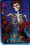 Grateful Dead Skeleton and Rose Large Tin