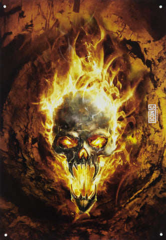 Halloween Flaming Skull Tin Sign