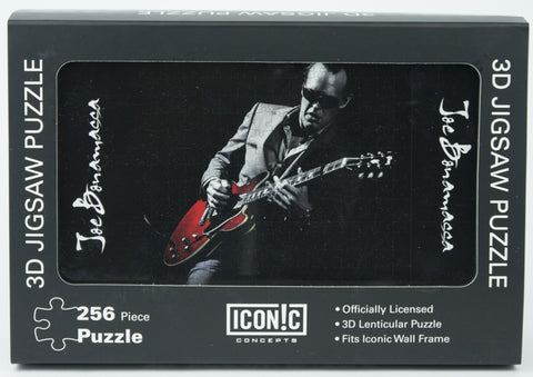 Joe Bonamassa 3D Puzzle - Playing Red Guitar