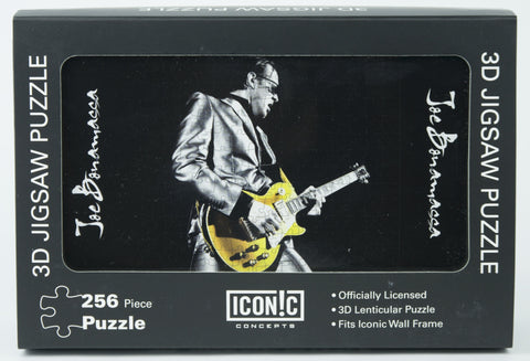 Joe Bonamassa 3D Puzzle - Playing Gold Guitar With Silver Jacket