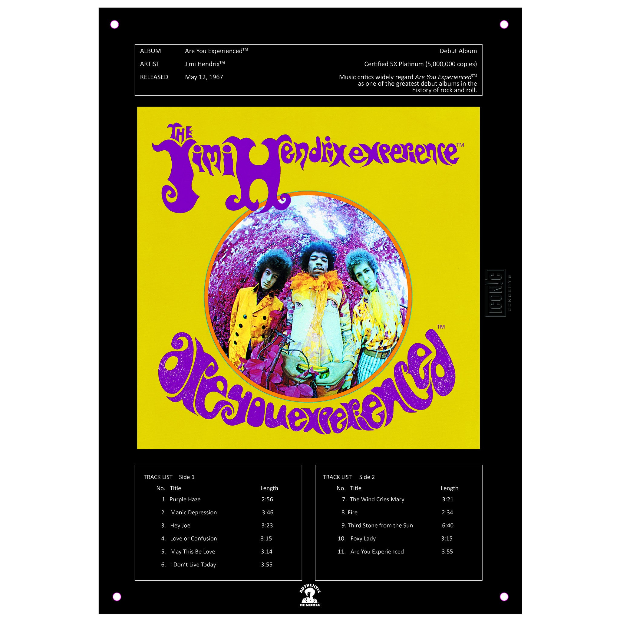 Jimi Hendrix Are You Experienced Tin Sign
