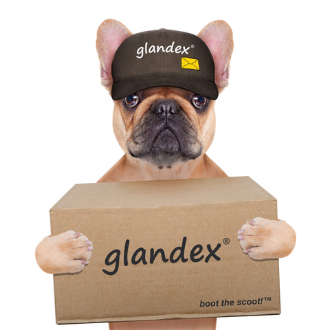 Glandex Supplement for Anal Gland Problems