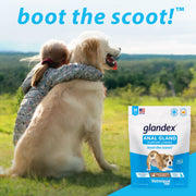 Glandex® Anal Gland Supplement for Dogs with Pumpkin - 60 Chews