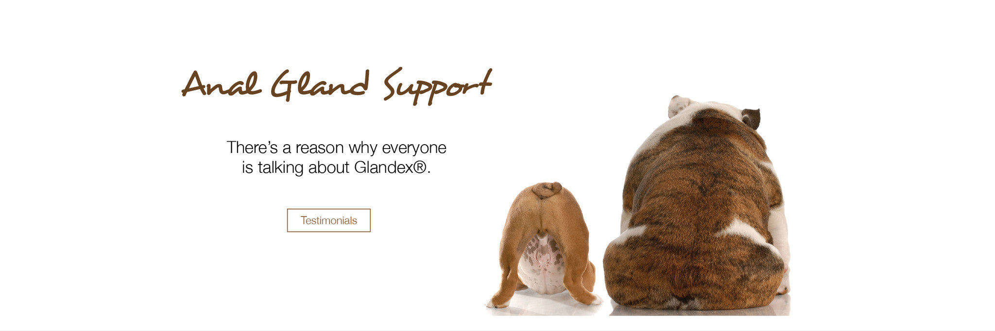 Glandex for Dog Glands
