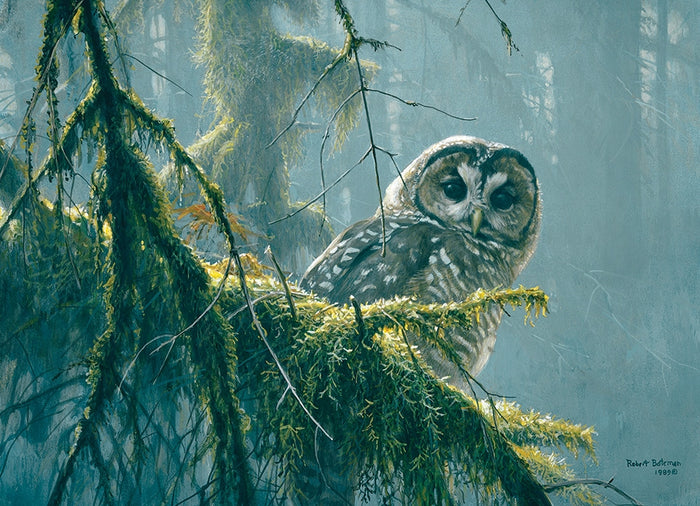Cobble Hill - Mossy Branches Owl, 500-Piece Puzzle