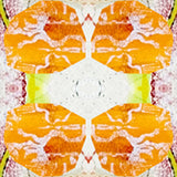 Pattern: Papeete Color: Tangerine