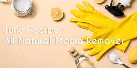 June_recipe_mould_remover