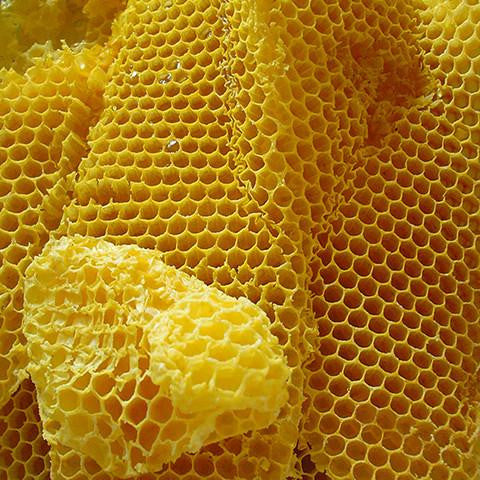 Beeswax Conventional