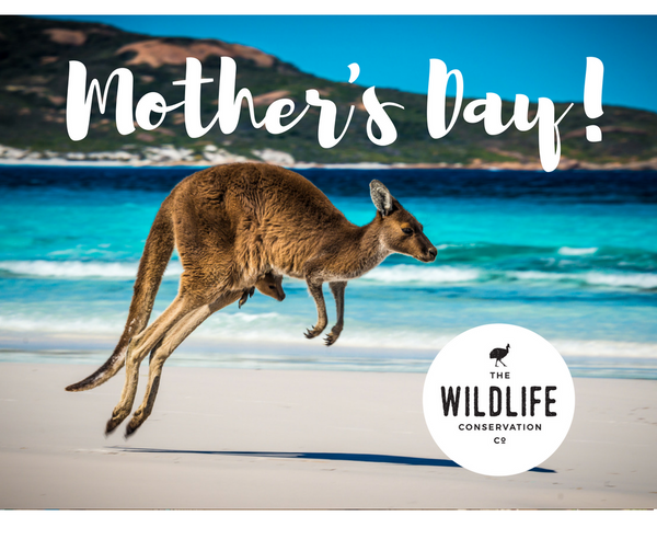 Mother's Day Eco Gift Pack - Small | FREE Shipping | Helps Endangered Species